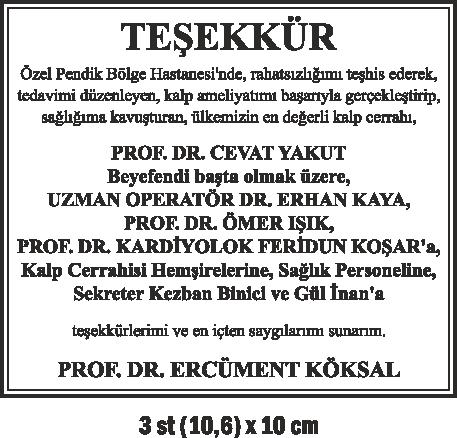 tesekkur6
